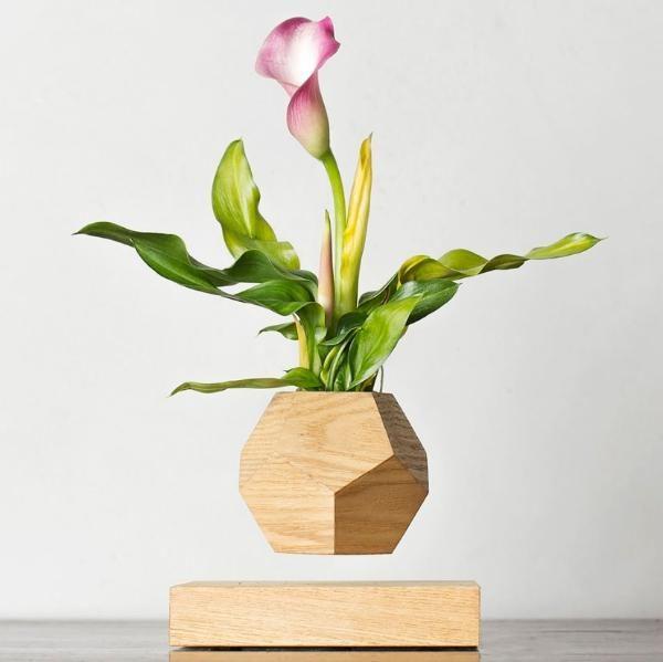 Купить левитирующий цветок Кала в Москве, купить левитационное растение Кала в России. Левитирующие цветки Кала, летающие кашпо.