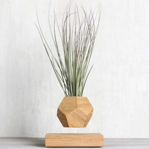 Купить левитирующий цветок в Москве, купить левитационный цветок в России. Левитирующие растения, летающие кашпо.